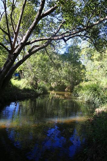 Hosanna Creek